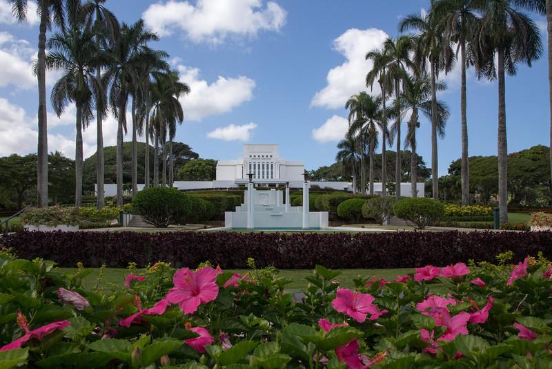 Hawaii-6125