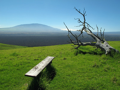 On the summit of Puu Waawaa. Mauna Kea in the background.  Na szcycie Puu Waawaa. Wulkan Mauna Kea widoczny w tle.
