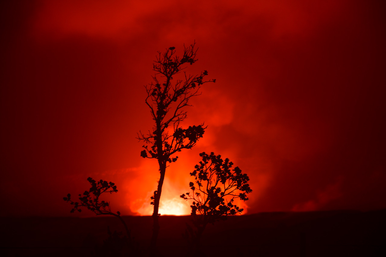 Silhouette of Ohia Tree against lava glow at Volcanoes National Park, HI - March 2018