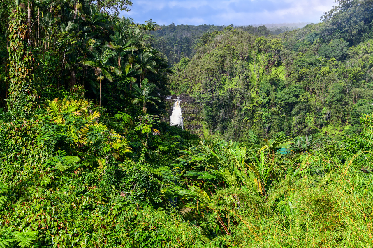 Distant view of Akaka Falls on the Big Island, HI - March 2018