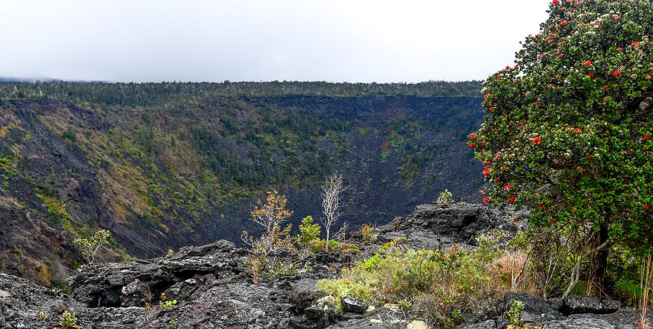 Puhimau Crater, Volcanoes National Park, Big Island, HI - March 2018