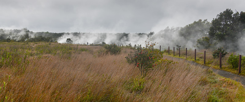 Steam and sulfurous gasses venting near Kilauea in Hawai'i Volcanoes National Park on the Big Island, HI - March 2018
