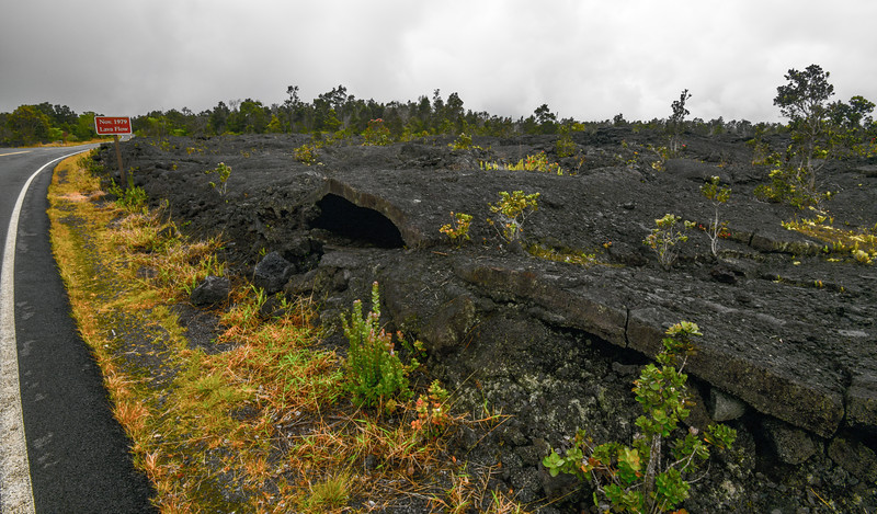 Lava field formed in 1979, Volcanoes National Park,  The Big Island, HI