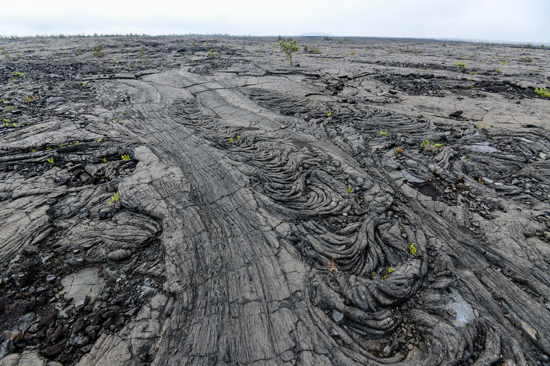 Lava field, Volcanoes National Park,  The Big Island, HI