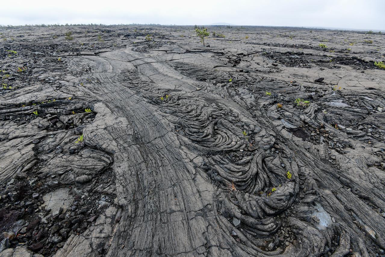 Lava field, Volcanoes National Park,  The Big Island, HI