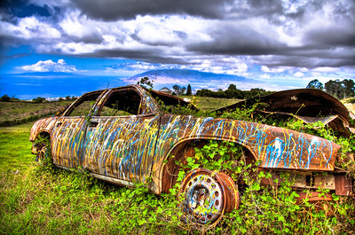 Abandoned car I found along side the road on our way to Maui's Winery.