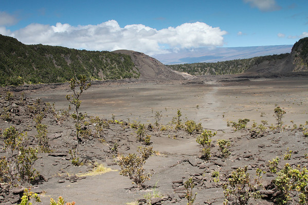 Kilauea Iki Crater Floor With Mauna Loa In Background, Big Island, Hawaii