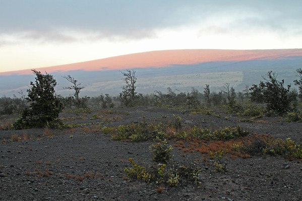 Mauna Loa At Sunrise- Big Island, Hawaii