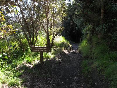 Kilauea Iki Loop Hike - Dec. 22, 2008