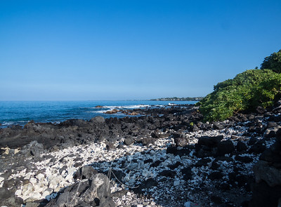 Although Alii Drive is a very busy street, lined with hotels and private homes, easements for public access are numerous, and some of them lead to delicious secluded rocky shores.