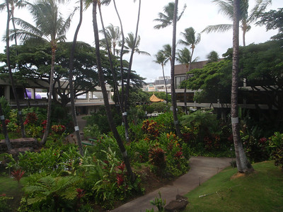 Hawaii - James pics 10-7-11