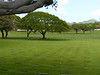 National Cemetary of the Pacific<br /> Oahu, Hawaii