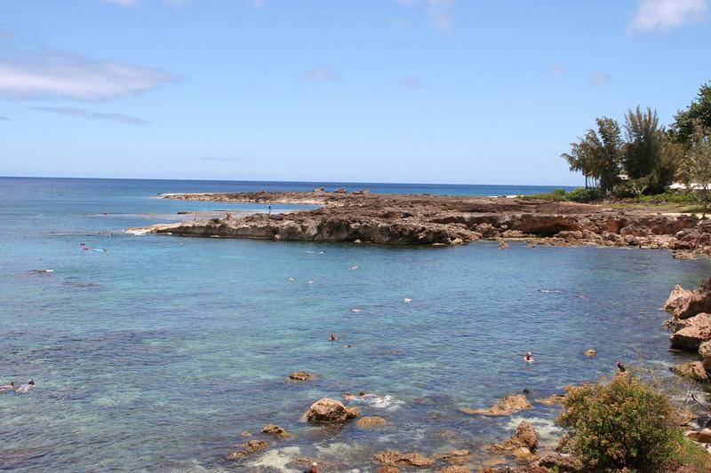 Snorkling in Shark's Cove
