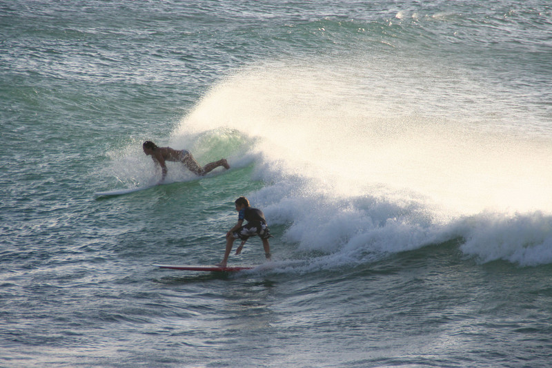 Surf at Turtle Bay