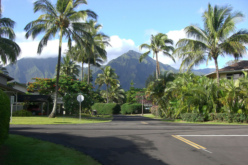 Our first look at Hanalei in the daylight.  This is the neighborhood we found ourselves in, our Bed & Breakfast was located here, in Hanalei town.  According to Wikipedia, the town in Lilo & Stitch is based on Hanalei.