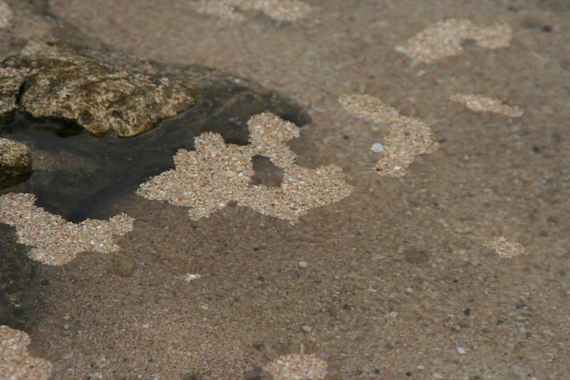 Floating sand