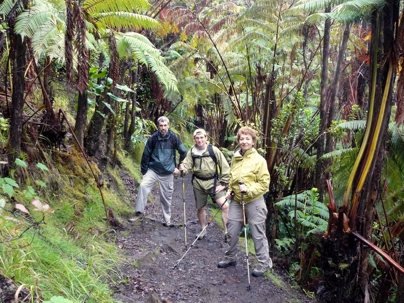 Rain forest in Volcanoes National Park on Big Island.