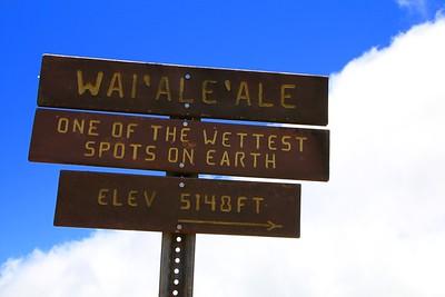 The wettest place on earth! Pu'uokila Valley @ Nā Pali Coast State Park. Kōkeʻe State Park,  Kaua'i, Hawaii, USA.