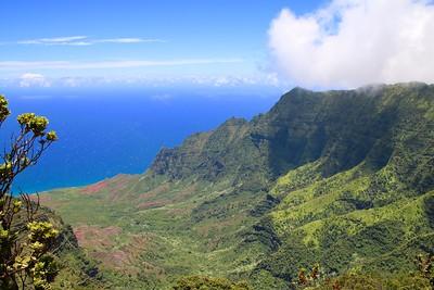 Pu'uokila Valley @ Nā Pali Coast State Park. Kōkeʻe State Park,  Kaua'i, Hawaii, USA.