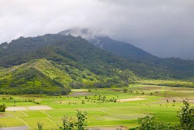 Hanalei Valley. Kaua'i, Hawaii, USA.
