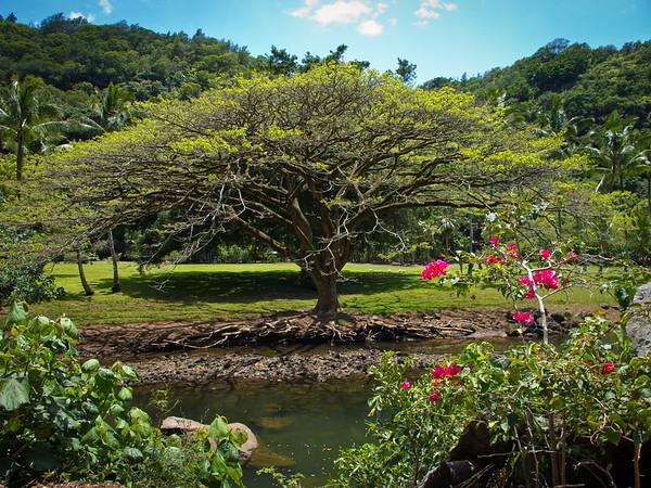 Hawaii, April 2011