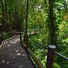 Walkway into the Hawaiian Tropical Botanical Gardens near Hilo, Hawaii.