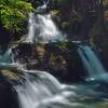 Onomea Falls at the Hawaii Tropical Botanical Garden.
