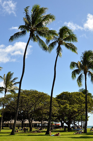 Hawaii Shots 2012