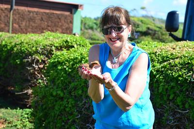 Sharyn holding a chick at a park on Kauai.