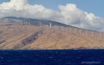 Windmills on west coast of Maui
