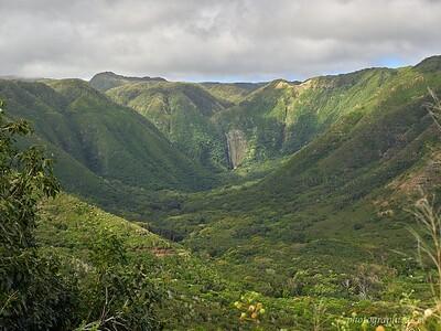 Molokai; Halawa valley. Hipuapua falls center right, tip of Moa'ula falls center left
