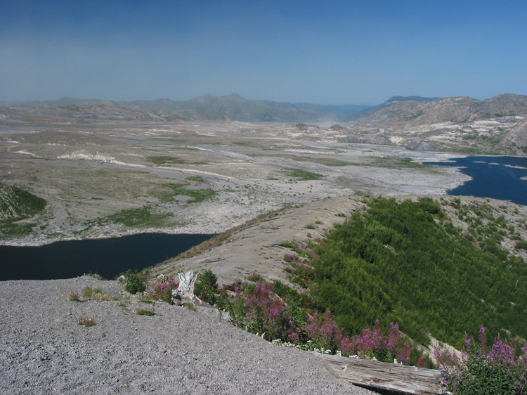 The devastated area between Mount St Helens and Spirit Lake.