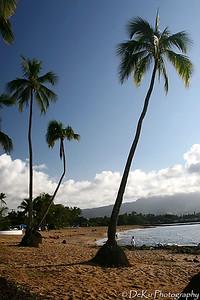 HaleiwaBeach(web)_0005