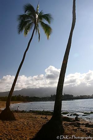 HaleiwaBeach(web)_0004