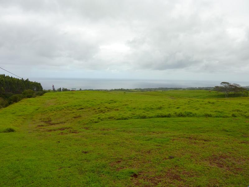 Hawaii Week 1-1000794.jpg