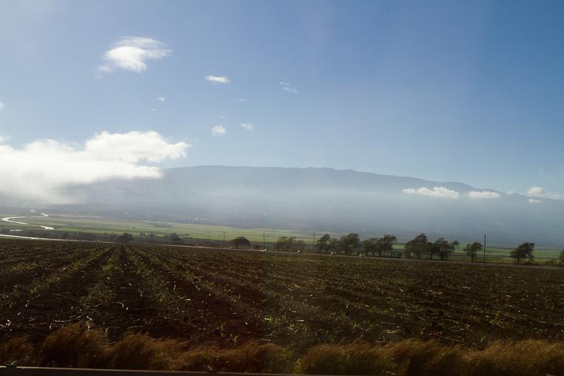 Hawaii Week 1-0728.jpg