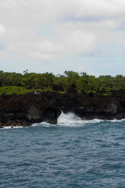 Hawaii Week 1-0832.jpg