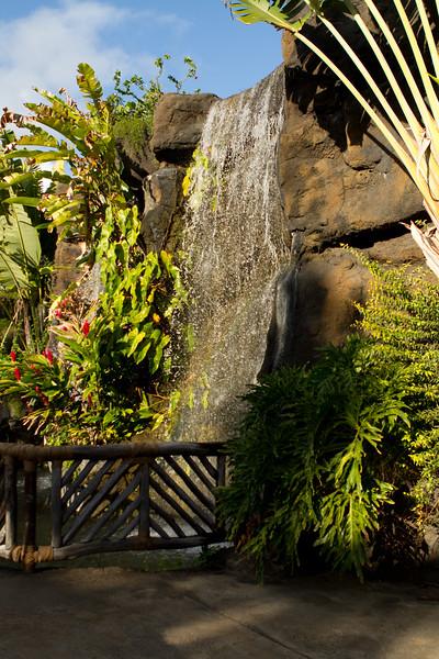 Hawaii Week 2-1407.jpg