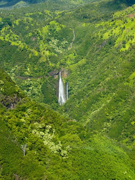 Hawaii Week 1-1010020.jpg