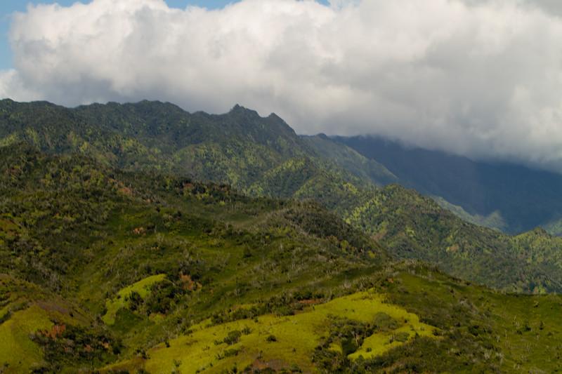Hawaii Week 1-0992.jpg