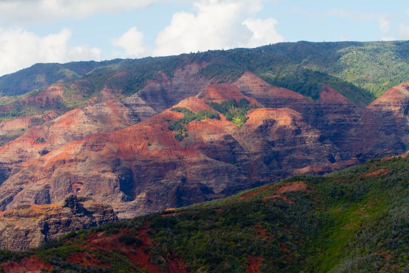Hawaii Week 1-0998.jpg