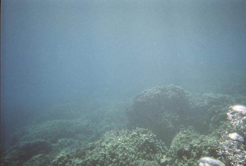 Hawaii Week 1-009.jpg