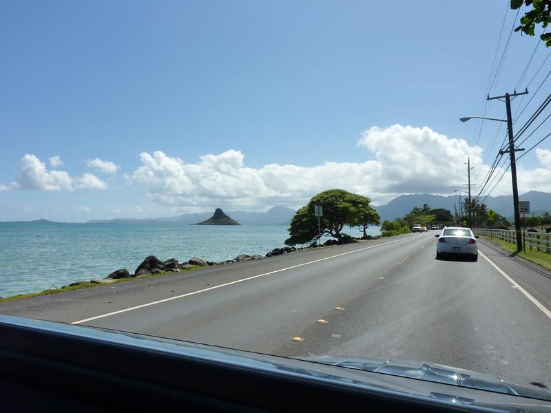Hawaii Week 2-1010241.jpg