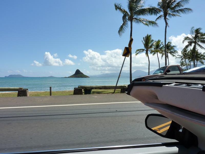 Hawaii Week 2-1010243.jpg