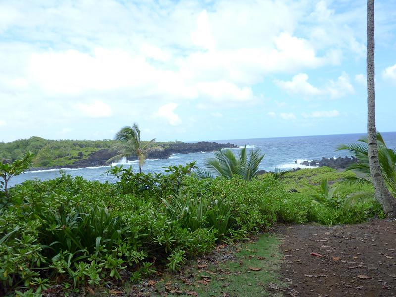 Hawaii Week 1-1000932.jpg