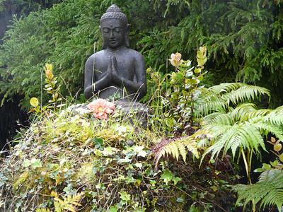 Big Island - Artists Garden