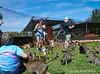 Lānaʻi Cats 2019_004