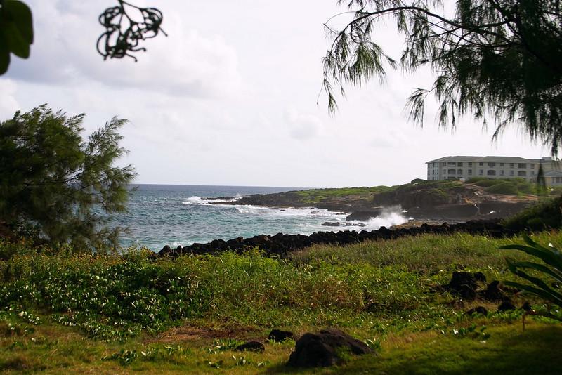 10-23-04 KAUAI 1_0094
