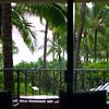 10-25-04 KAUAI 1_0045