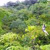 10-24-04 KAUAI 1_0033